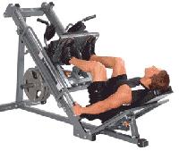 Программы тренировок для мышц бедра