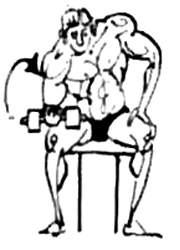 Концентрированные сгибания руки с гантелью с опорой руки в область у колена