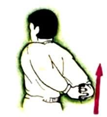 Упражненя на растяжку в боевых искусствах