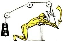 Трицепсовые выпрямления рук вперед в наклоне с упором локтями на блочном станке