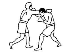 Тайский бокс для начинающих
