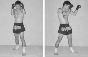 Боевая стойка в тайском боксе