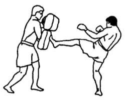 Отработка прямого удара ногой