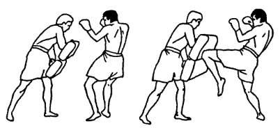 Отработка ударов коленями по лапам