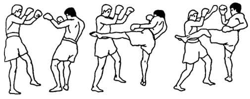 Техника нанесения удара голенью левой ноги