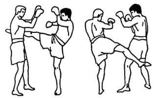 Тренировочный бой
