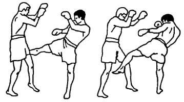 Удары ногами по бедрам по передней ноге противника