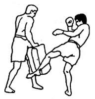 Боевой удар ногой по лапе