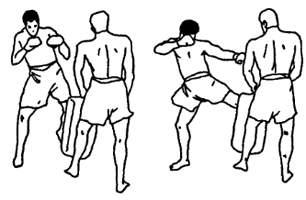 Круговой удар ногой
