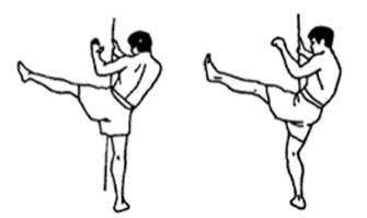 Упражнения для разминки в тайском боксе