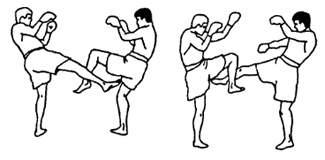 Контратака в муай тай: круговой удар ногой