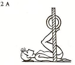 Жим ногами с вертикальным направлением движения