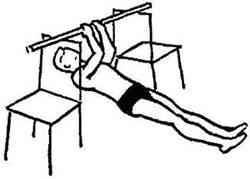 Упражнение для бицепсов - сгибателей рук
