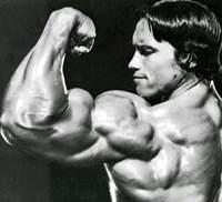 Методика тренировки для мышц рук