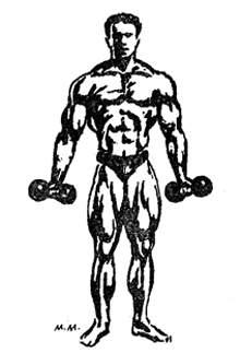 Система тренировок Евгения Сандова