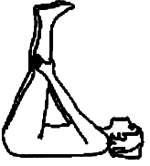 Упражнение для растяжки подколенных сухожилий