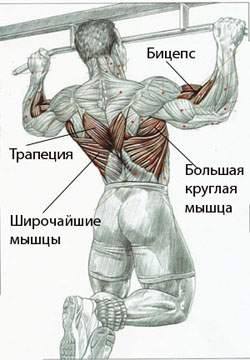 Подтягивание на перекладине к груди широким хватом