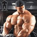 Упражнения для дельтовидных мышц: видео уроки