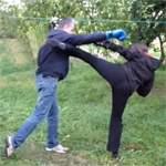 Удары ногами: видео урок