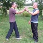 Удар кулаком: видео урок